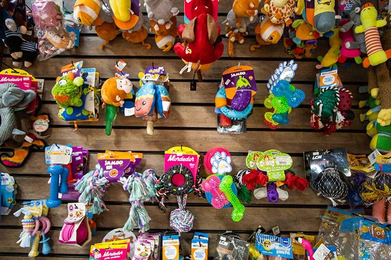 Brinquedos e mordedores